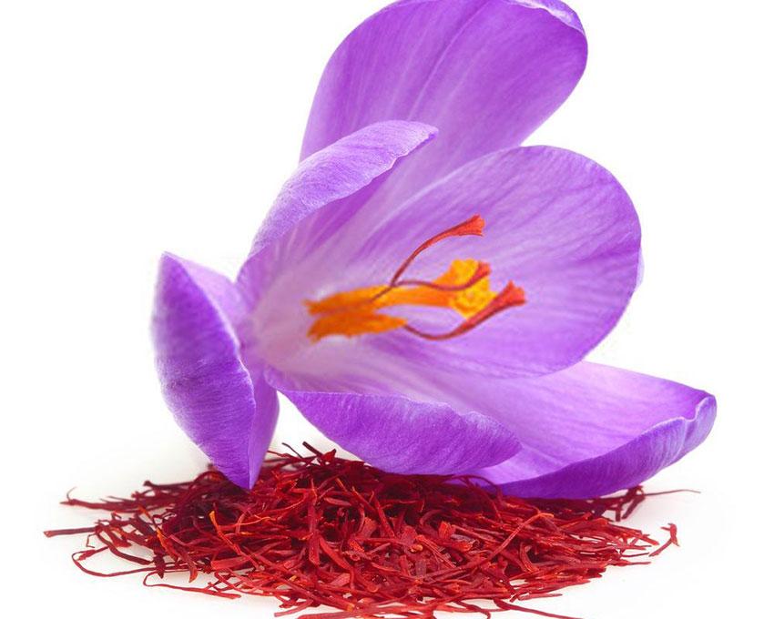 Nhụy hoa nghệ tây thành phần chính của Saffron collagen